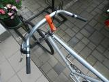 MTB Singlespeed Fixie (1990-1995)
